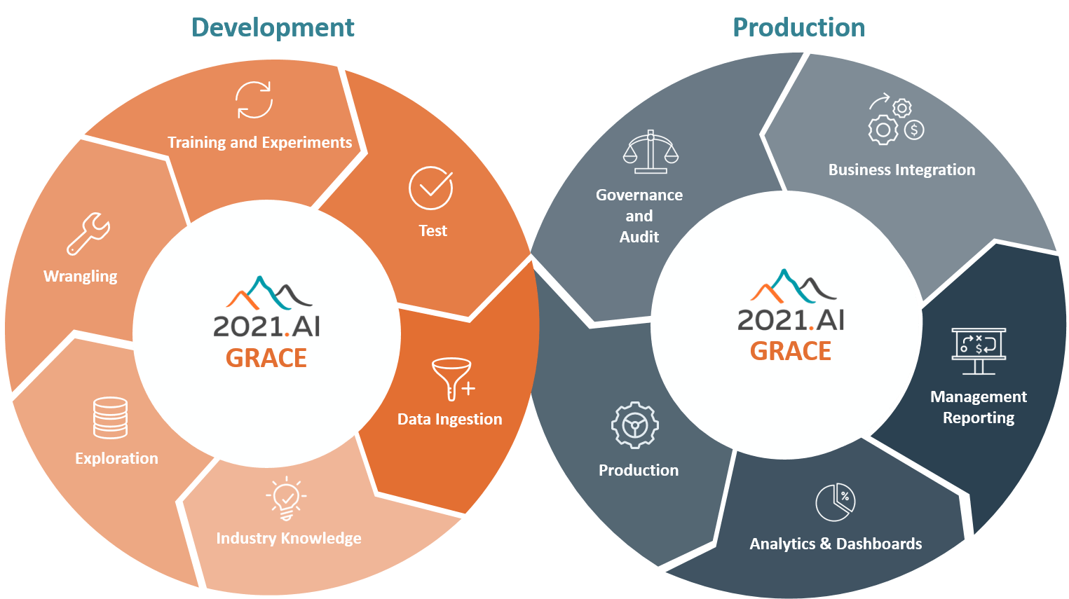 Grace AI Platform - Development and Production