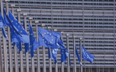 The EU rules on Artificial Intelligence – Five actions to consider now!